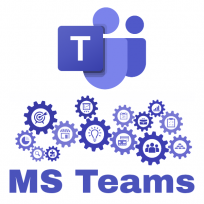 MS  Teams Grundlagen